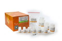 EasyPure® Food and Fodder Security Genomic DNA Kit