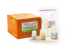 EasyPure® Quick Gel Extraction Kit